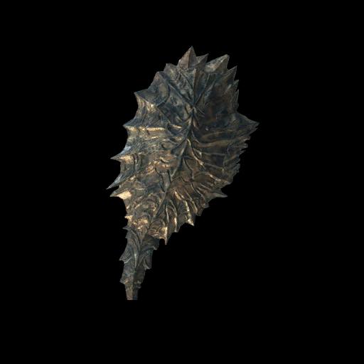 Black Dragon Shield Image