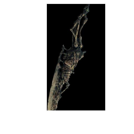 Gravelord Sword Image