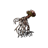 Dried-Root.png